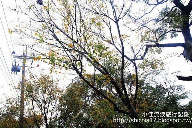http://1.bp.blogspot.com/-M9abUv2kZ_o/Uq2-0wdOTQI/AAAAAAAAKi4/iJedblpggsg/s640/tn__MG_8021.JPG