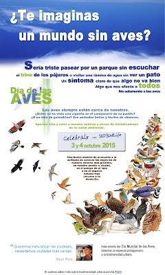 http://www.seo.org/trabajamos-en/aves-amenazadas/