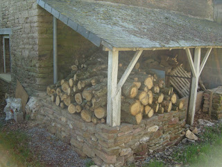 Woodstore now overflowing with cut oak logs