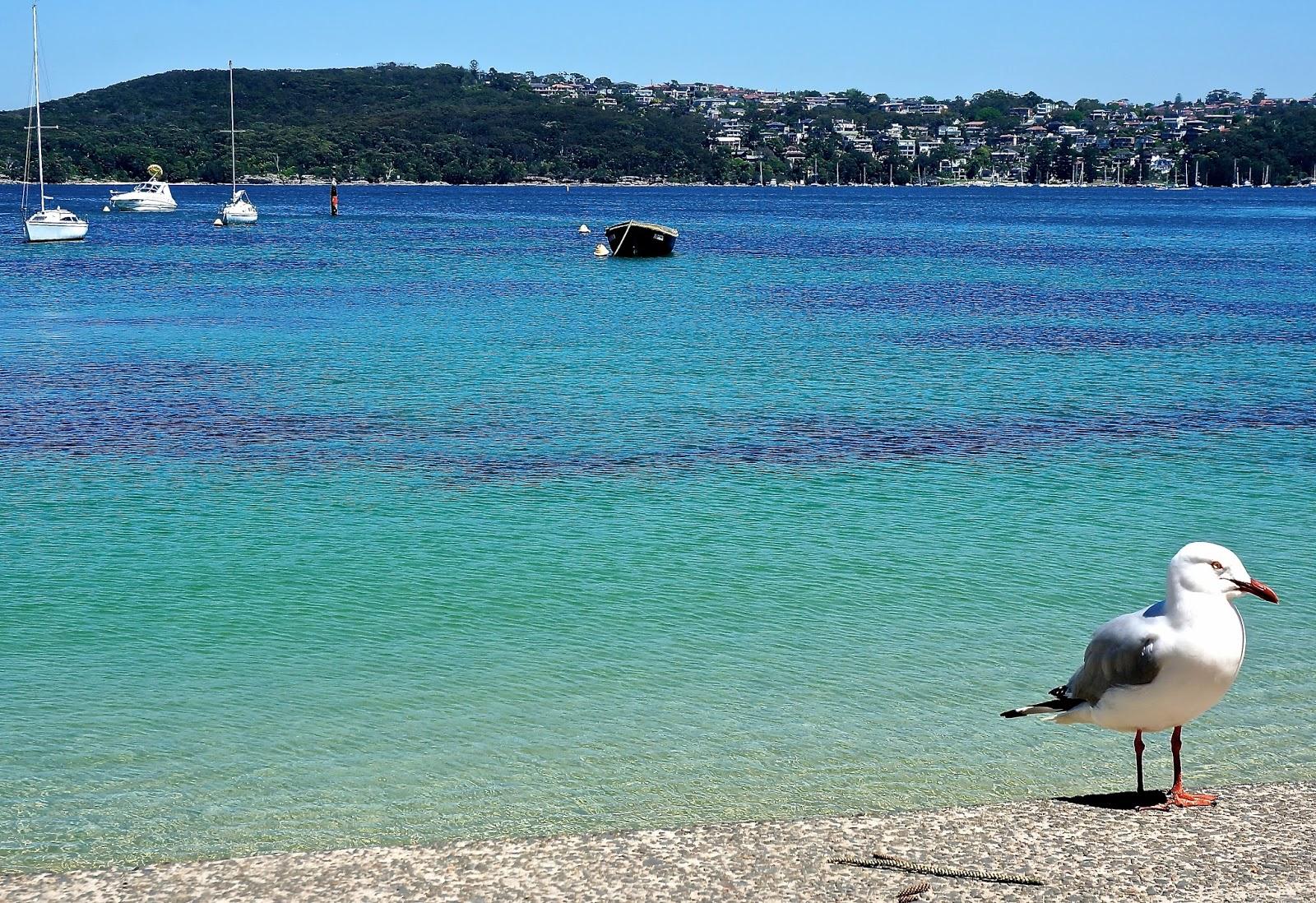 Manly beach Dee Why beach Northern beaches Coastal Walks Ferry Circular Quay Sydney Australia Travel Landscape Lexie blush www.lexieblush.co.uk