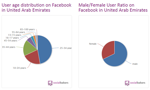 UAE Facebook Users Statistics as of November 2012