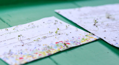 Wildflower Seeded Paper