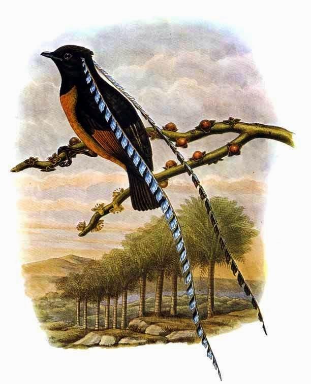 World Bird Sanctuary: ...