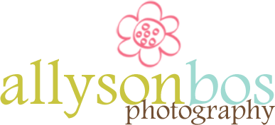 Allyson Bos Photography