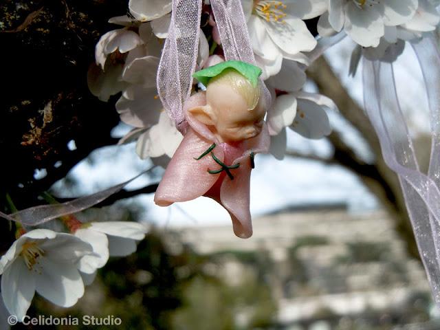 Elfo del Ciliegio in Fiore