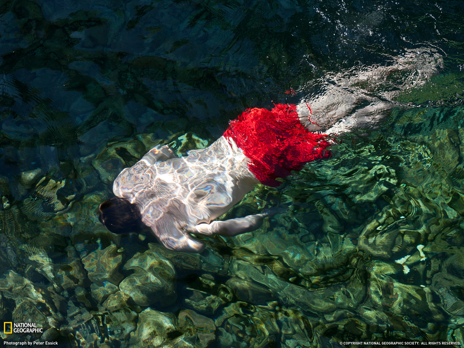 http://1.bp.blogspot.com/-MAxh8ZIUepU/Tpj7LR4ODlI/AAAAAAAABT8/lpG4j5dZZOE/s1600/Swimmer%252C+Portugal.jpg