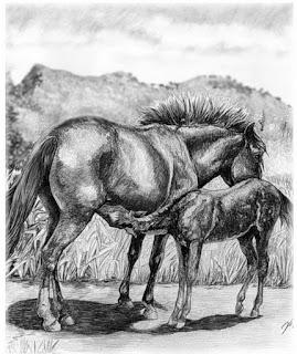 dibujo-de-caballo-negro-parado-a-lapiz