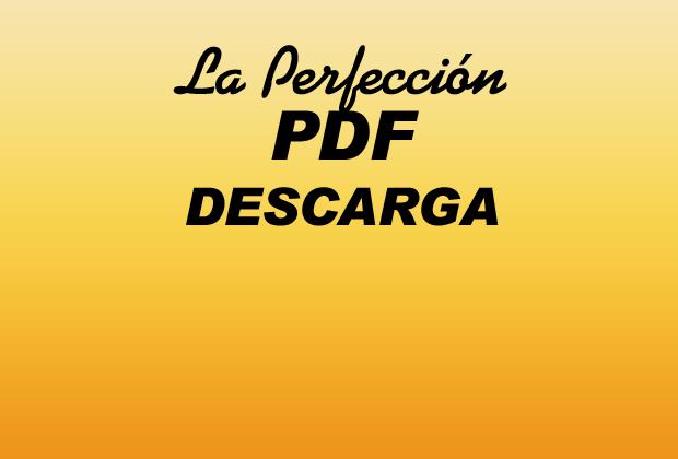 La Perfección PDF