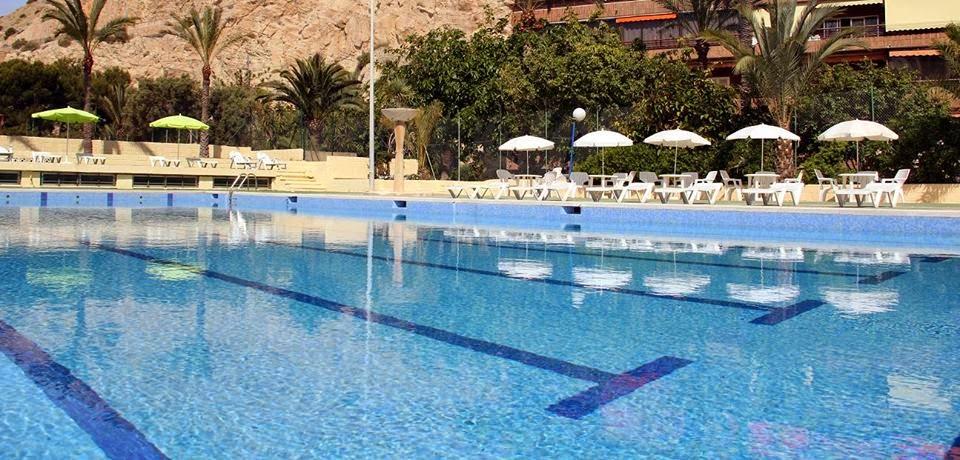 Best western hotel albahia alicante piscina del hotel for Piscina alicante
