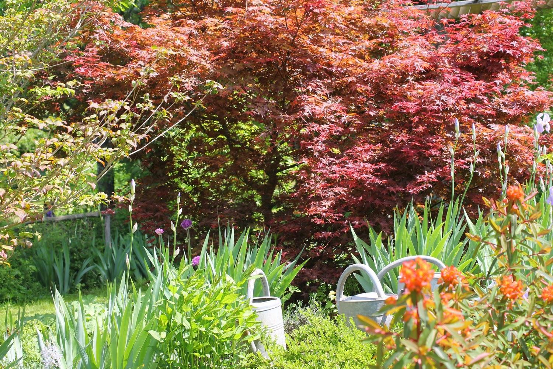Mes motsdoubs foire aux plantes au jardin de la ferri re for Jardin aux plantes