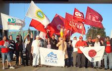 Federação e sindicatos do Paraná na campanha em defesa da NR dos Frigoríficos.