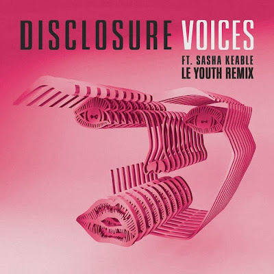 Disclosure feat. Sasha Keable - Voices (Le Youth Remix)