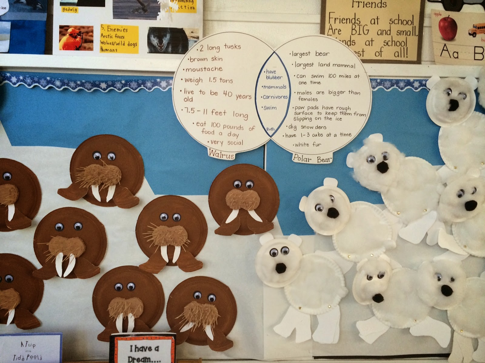 Thesingingnurse furthermore Original together with Connectbear additionally Cute Arctic Animals Bulletin Board likewise Ocean Life. on hibernation worksheets for kindergarten