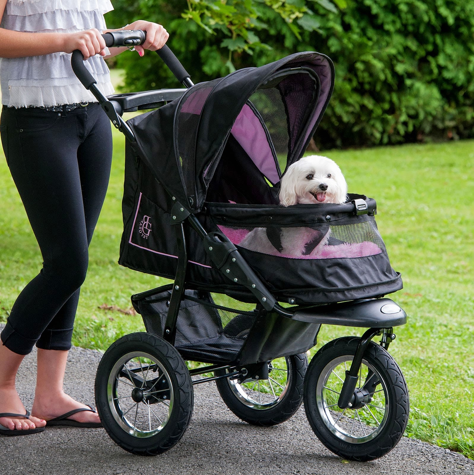 How to Choose Pet Strollers for Dogs