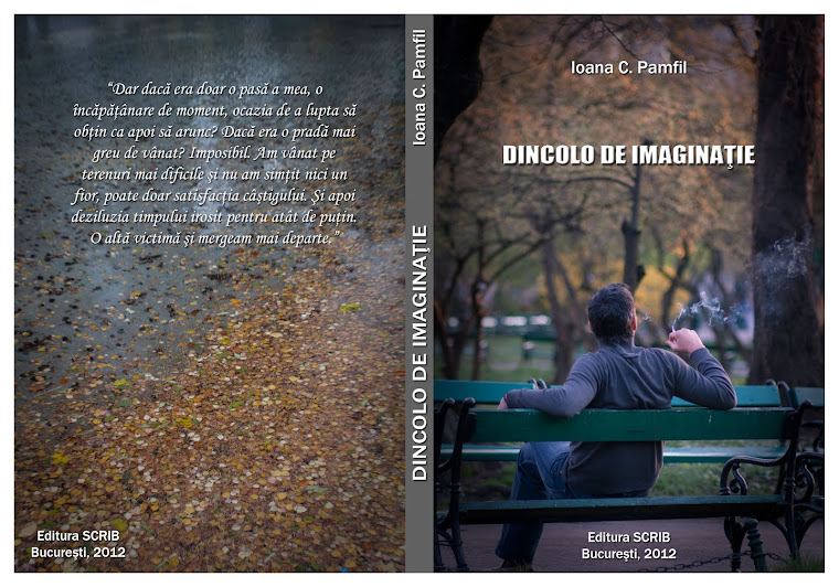 Dincolo de imaginaţie - cartea