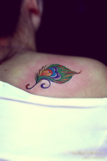 colorful peacock feather tattoos on the shoulder - 2
