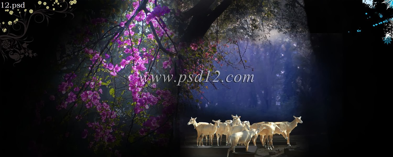 Photoshop backgrounds 12x36 indian wedding album templates design 10 - Photoshop Backgrounds Kanyadan Psd Vol 3