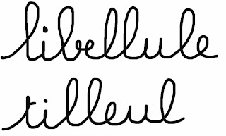 écriture cursive libellule tilleul