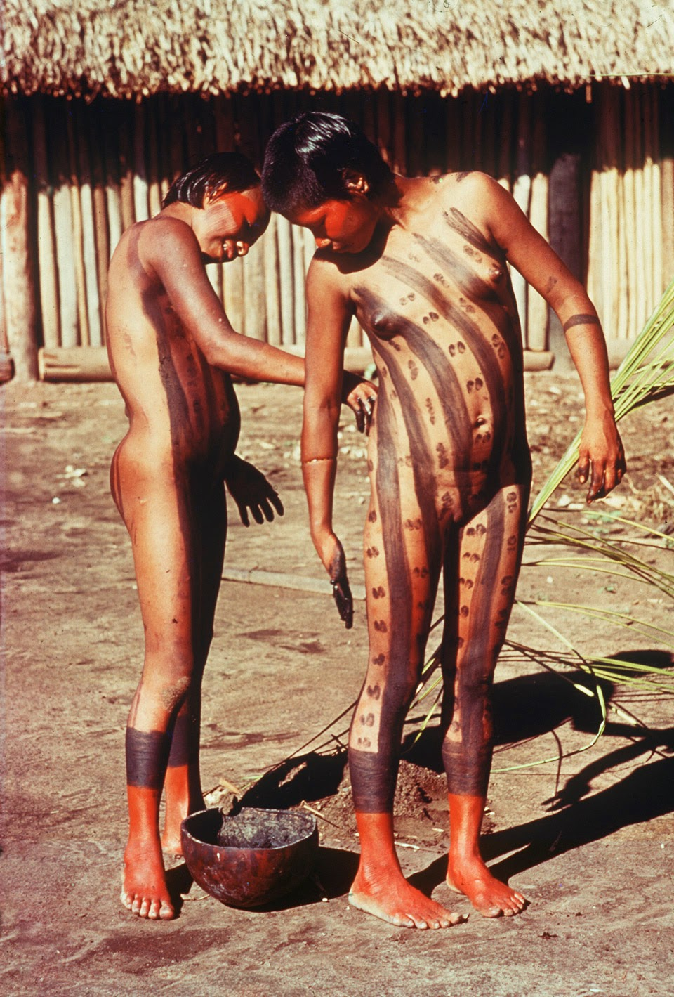 Naked indigenoue from amazon sex film