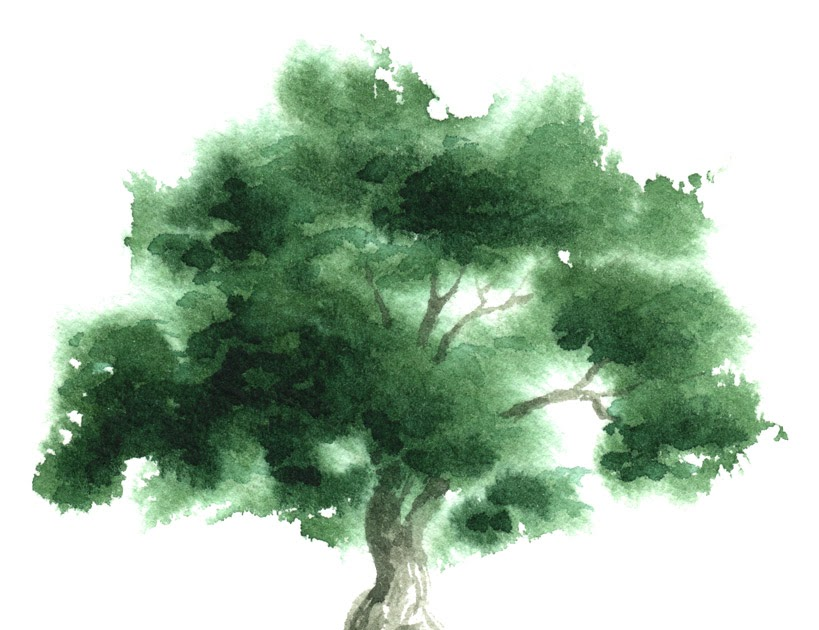 Little Watercolor Trees: Tree Of Life