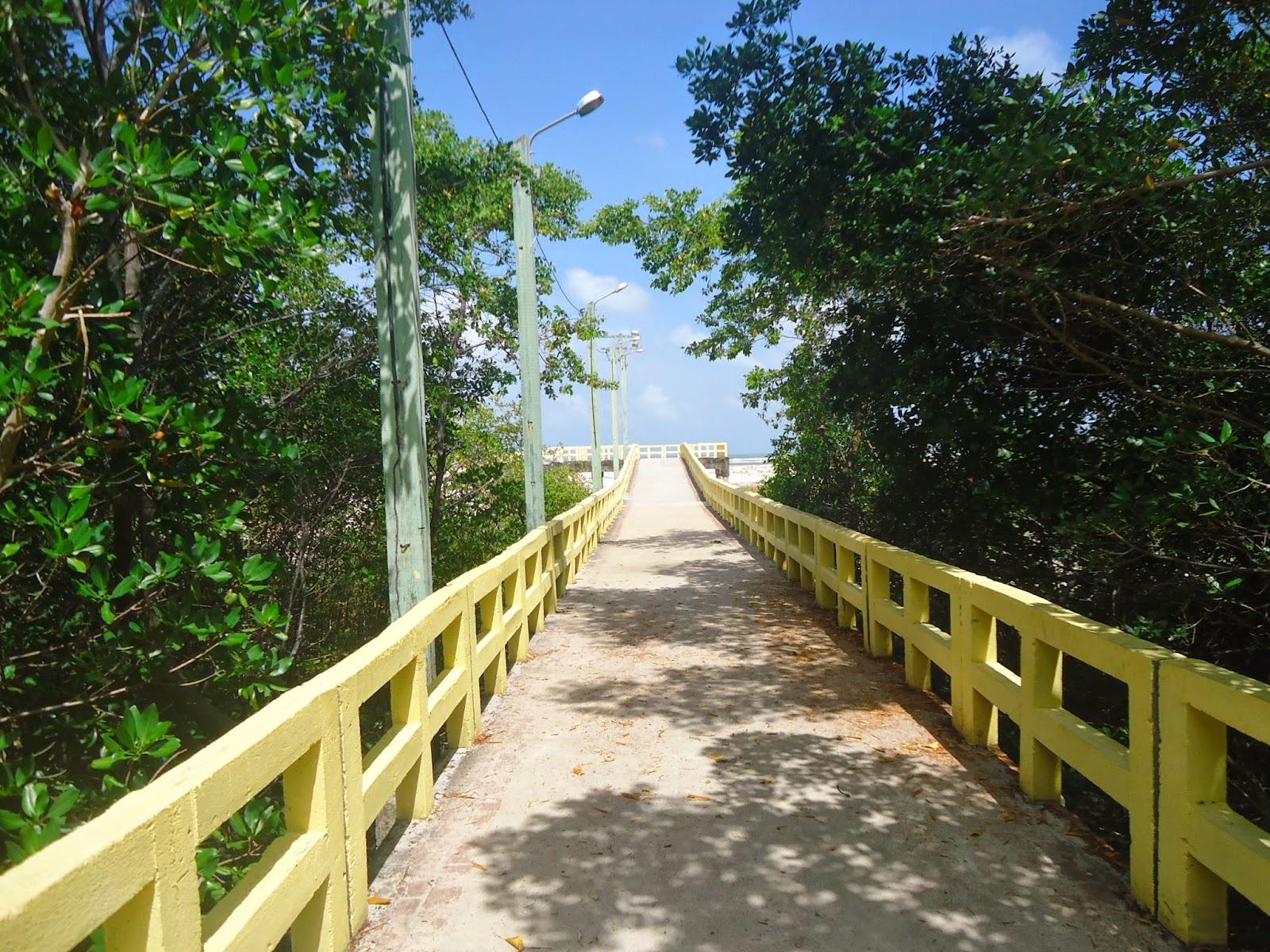 Resultado de imagem para Salinópolis praia das corvinas
