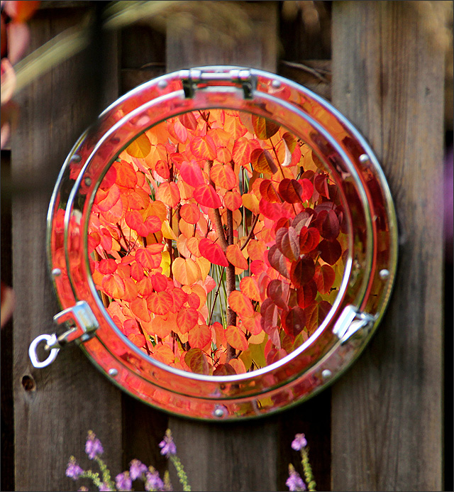 Anitas blogg: De fyra blomsterhaven skriver om...