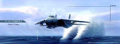 Couverture facebook F-14 TOMCAT