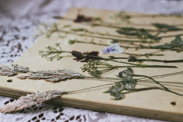 How to make: Pressed wild flowers in glass frame