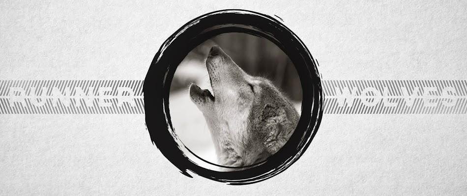 Runner Wolves