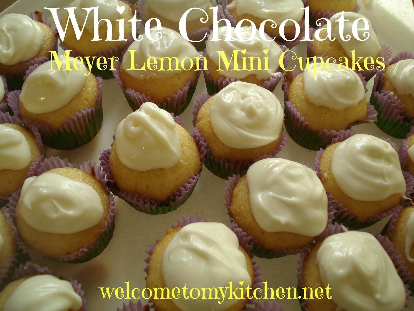 Dove Chocolate Discoveries White Chocolate Meyer Lemon Mini