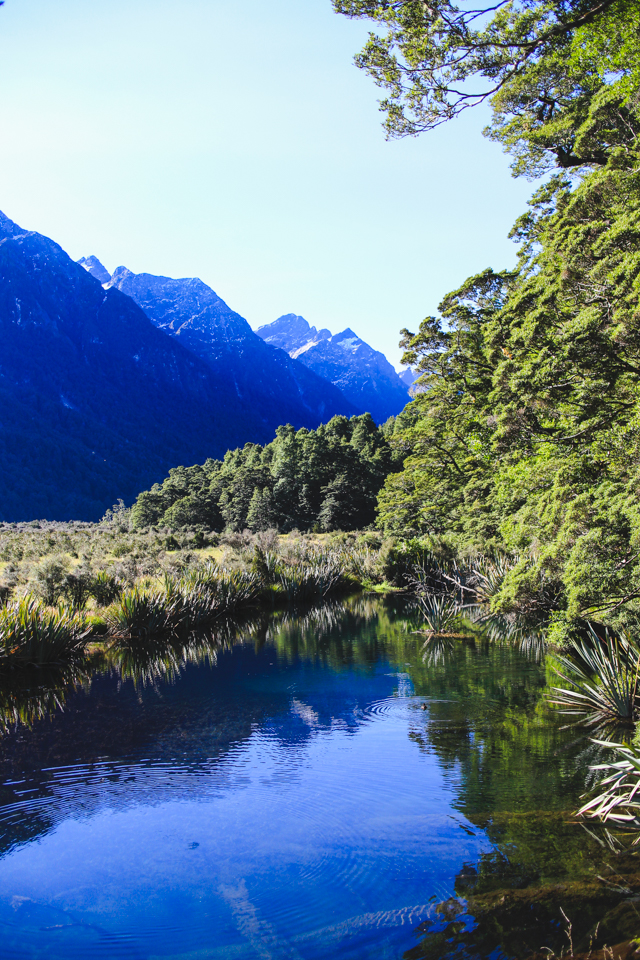 Mirror Lakes | the road to Milford Sound, Fiordland, New Zealand