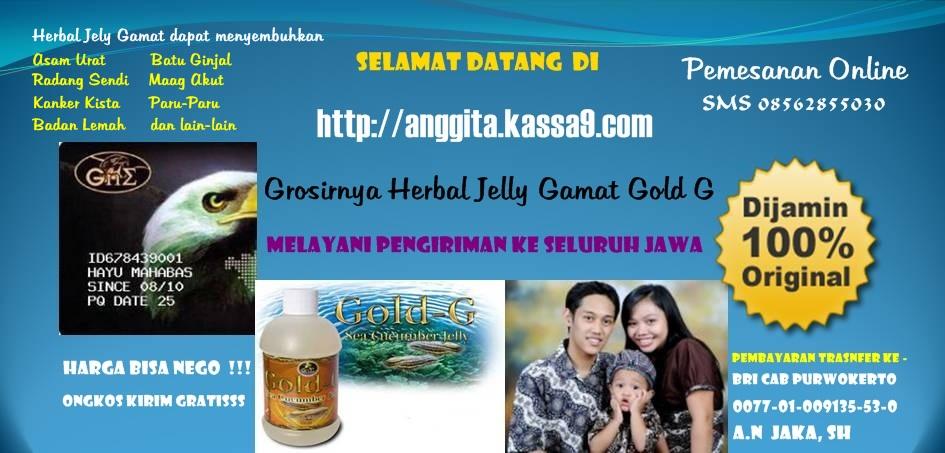 Agen Jelly Gamat Purwokerto