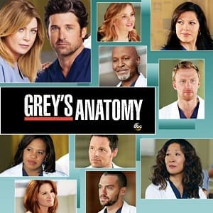 Greys Anatomy - A Anatomia de Grey 9ª Temporada Completa Séries Torrent Download capa