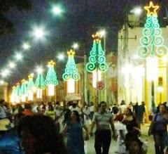 Motivos Navideños en céntrica calle Ciudad de Calkiní. 19dic12.