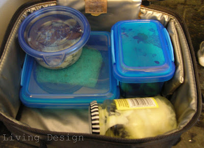 Living Design: Packed Lunches for Adults