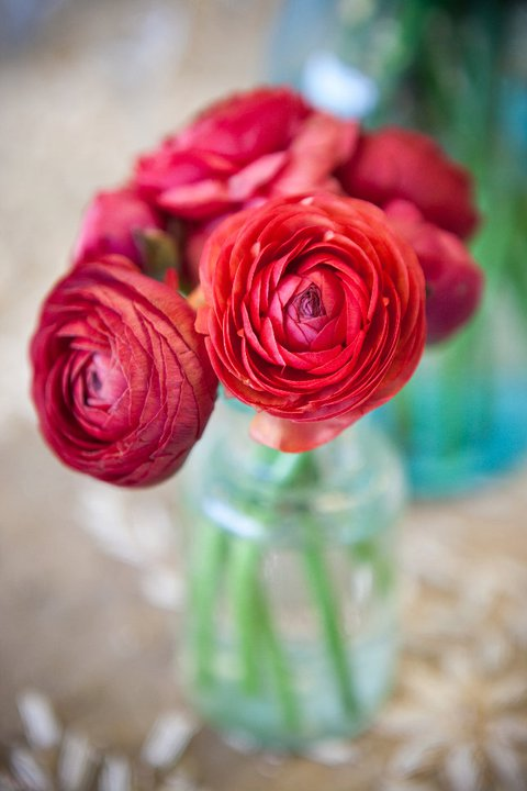 ann arbor wedding florist, ferndale, detroit, southeast michigan bride ranunculus, red vintage teal bottle apothacary jar, bride