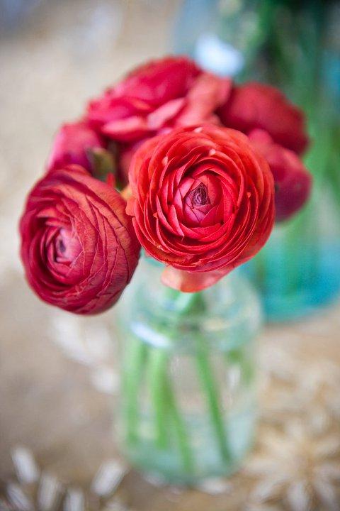 ann arbor wedding florist, ferndale, detroit, southeast michigan bride ranunculus, red vintage teal bottle apothacary jar, bride