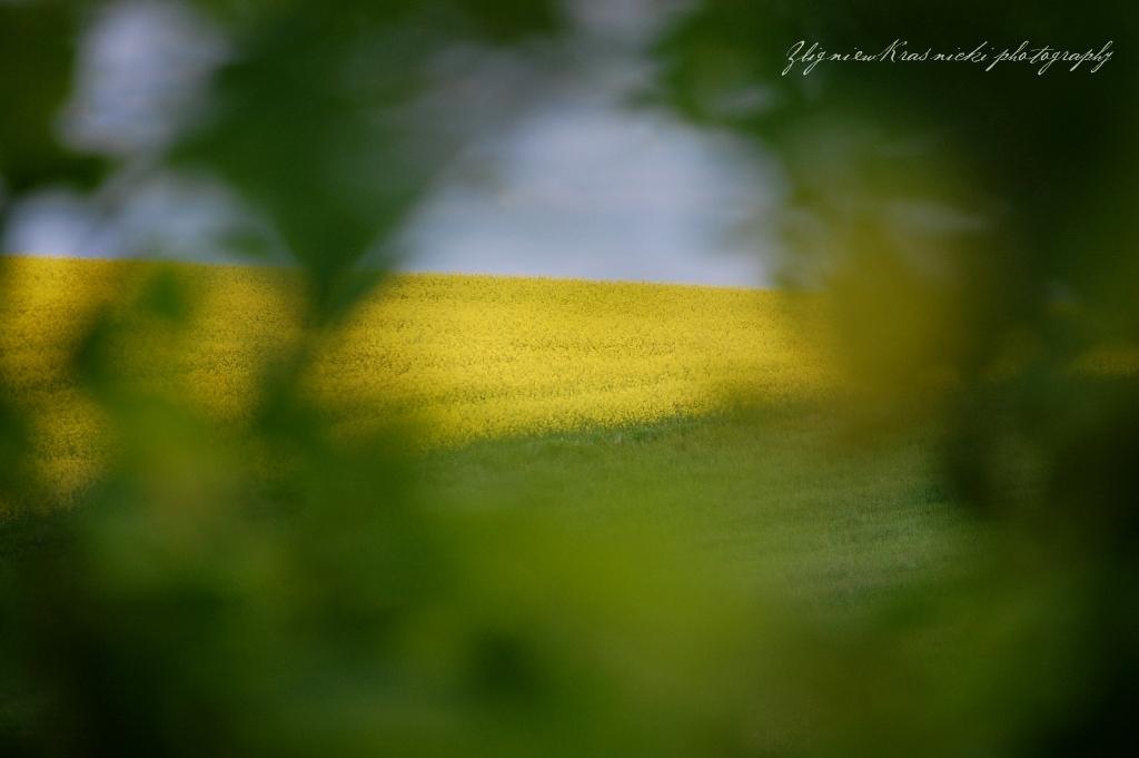 Warmia - etnograficzne poszukiwanie wiosny
