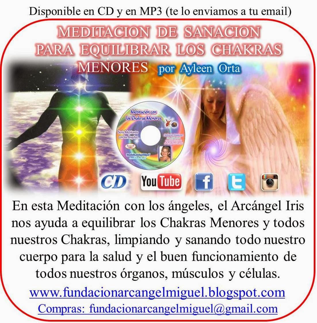 Fundaci U00f3n Arc U00e1ngel Miguel Venezuela  Meditaciones En Cd