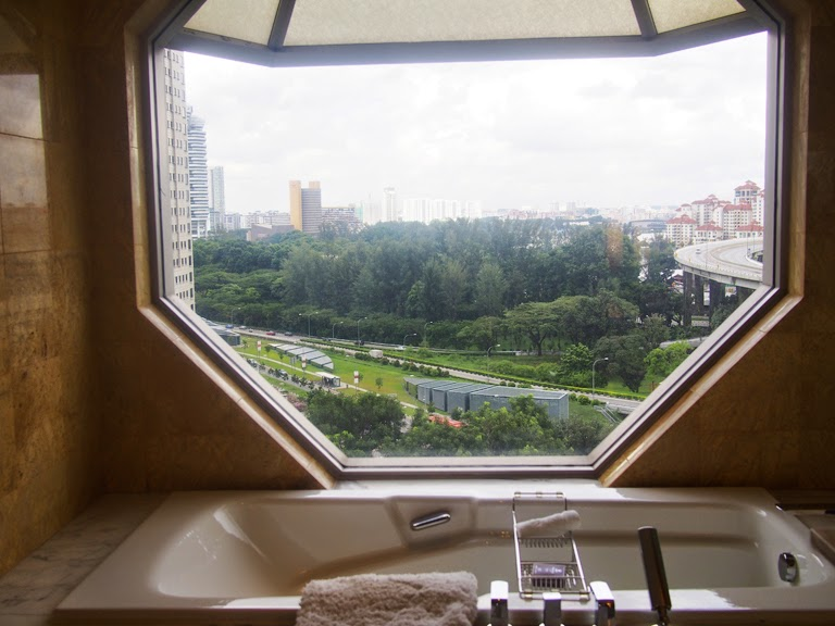 ritz carlton singapore view
