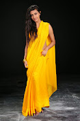 Neelam Upadhyay photos in Yellow saree from Action-thumbnail-7