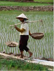 Art Tour 2014 Vietnam & Cambodia