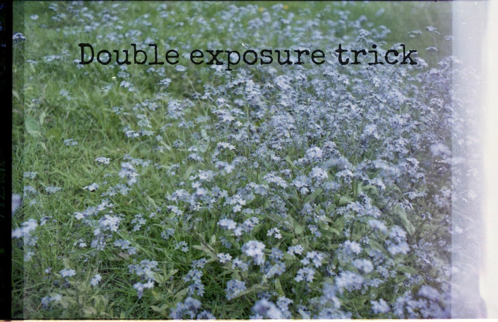 http://talesonfilm.blogspot.co.uk/2014/06/double-exposure-trick.html