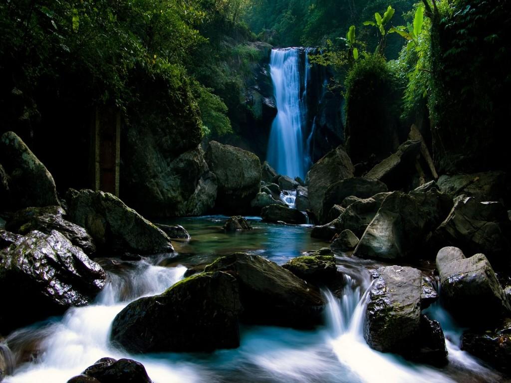 http://1.bp.blogspot.com/-MFvzC4YRTW0/UD93AST3gsI/AAAAAAAADUc/9VHkoOKruNs/s1600/cascada_en_el_bosque-1024x768.jpg