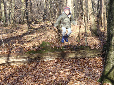 Puszcza Niepołomicka, jesienny spacer, zabawy w lesie
