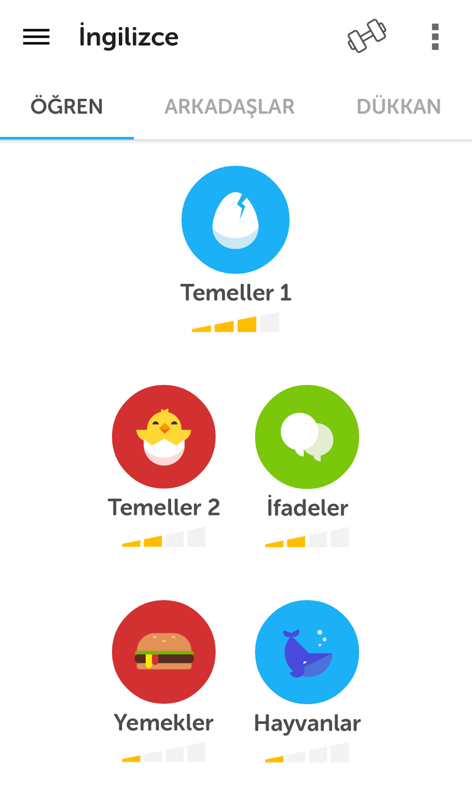 Duolingo-androidAcini