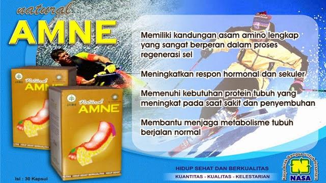 amne, asam amino evolution, asam amino evolution jogja, asam amino evolution nasa, amne nasa, amne murah, distributor amne, toko kasimura, herbal kasimura