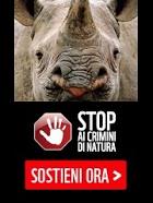 Campagna WWF: Il Crimine usa la natura per finanziare guerre e terrorismo.