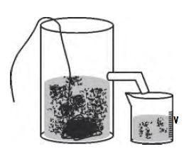 Pengukuran volume zat padat menggunakan satu gelas ukur dan satu gelas berpancuran