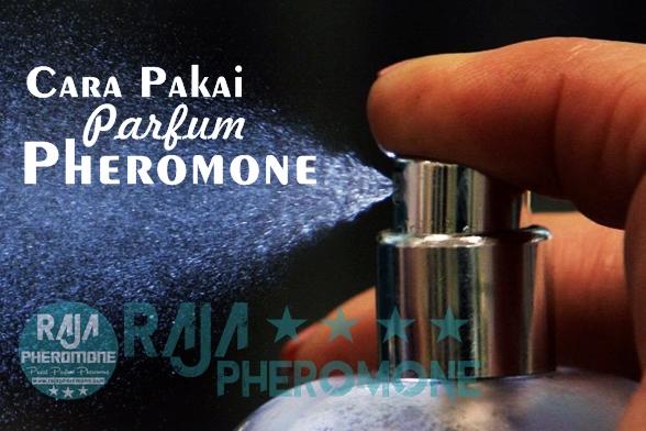 Pengertian Pheromone Parfum Pemikat Lawan Jenis Pakai Tahan Parfume Terbaik